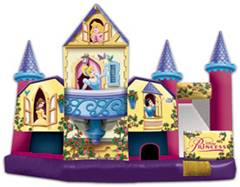 Disney Princess Collection 3D 5 In 1 Combo